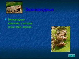 Земноводные Земноводные- животные, у которых кожа голая, нежная.