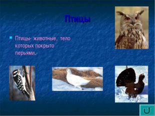 Птицы Птицы- животные, тело которых покрыто перьями.