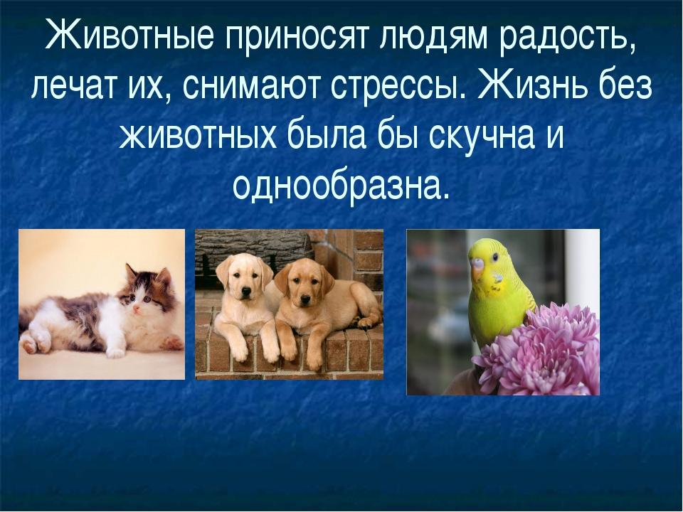 Животные приносят людям радость, лечат их, снимают стрессы. Жизнь без животны...