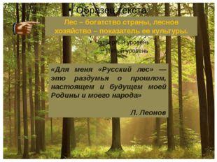 «Для меня «Русский лес» — это раздумья о прошлом, настоящем и будущем моей Р
