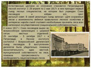 Естественным центром их сплочения становится Петроградский лесной институт.