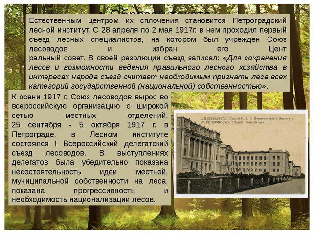 Естественным центром их сплочения становится Петроградский лесной институт....