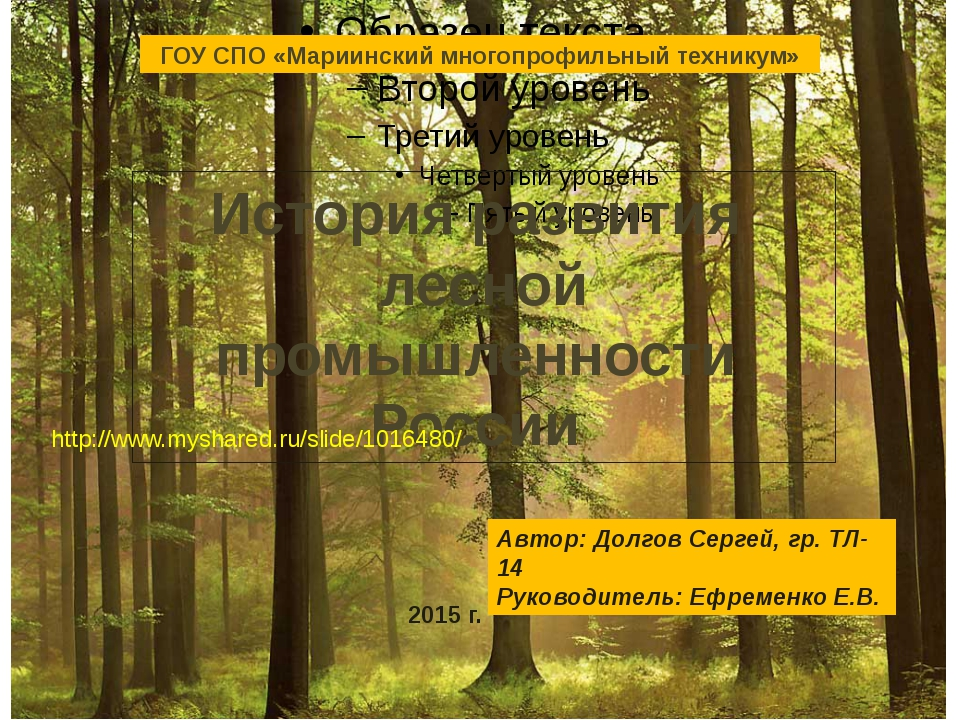 ГОУ СПО «Мариинский многопрофильный техникум» История развития лесной промыш...