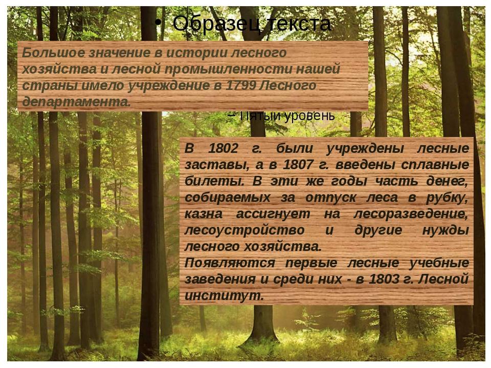 Большое значение в истории лесного хозяйства и лесной промышленности нашей с...