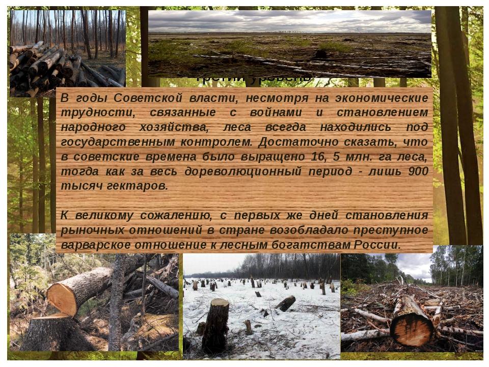 В годы Советской власти, несмотря на экономические трудности, связанные с во...