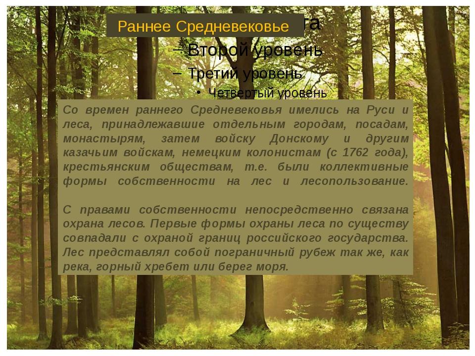 Со времен раннего Средневековья имелись на Руси и леса, принадлежавшие отдел...