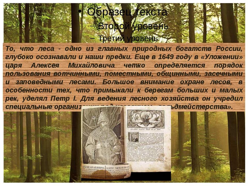 То, что леса - одно из главных природных богатств России, глубоко осознавали...