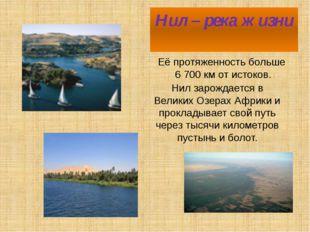 Нил – река жизни Её протяженность больше 6 700 км от истоков. Нил зарождается