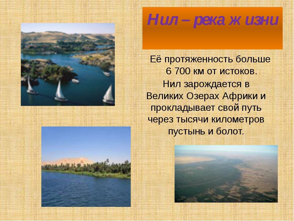 Нил – река жизни Её протяженность больше 6 700 км от истоков. Нил зарождается...