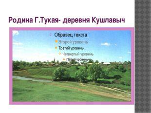 Родина Г.Тукая- деревня Кушлавыч
