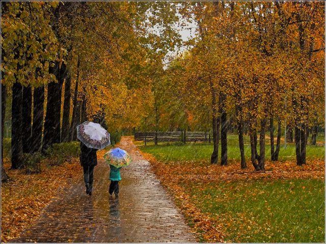 Что происходит осенью в природе?