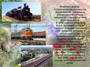 Железная дорога Развитие промышленности Воронежской губернии в значительной с