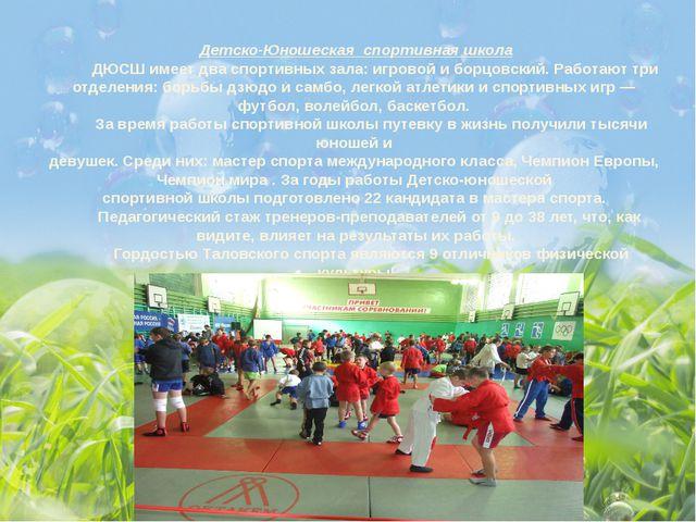 Детско-Юношеская спортивная школа ДЮСШ имеет два спортивных зала: игровой и б...