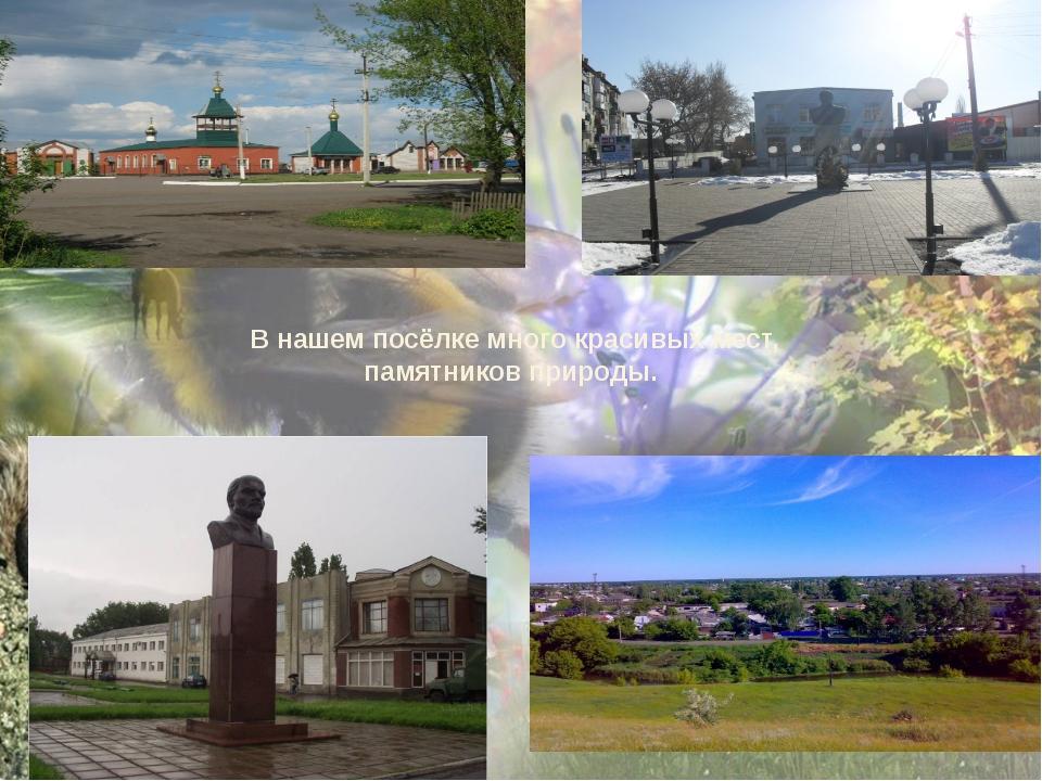 В нашем посёлке много красивых мест, памятников природы.
