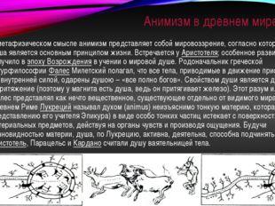Анимизм в древнем мире В метафизическом смысле анимизм представляет собой мир