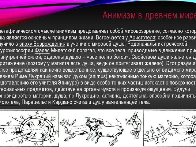Анимизм в древнем мире В метафизическом смысле анимизм представляет собой мир...