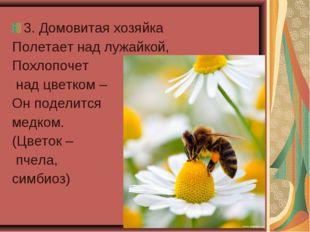 3. Домовитая хозяйка Полетает над лужайкой, Похлопочет над цветком – Он подел