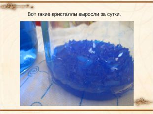 Вот такие кристаллы выросли за сутки.