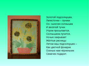 Золотой подсолнушек, Лепесточки – лучики Он- сыночек солнышка И весёлой тучки
