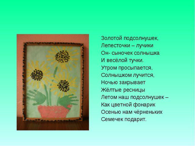 Золотой подсолнушек, Лепесточки – лучики Он- сыночек солнышка И весёлой тучки...