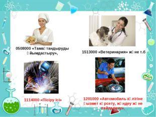 1513000 «Ветеринария» және т.б 0508000 «Тамақтандыруды ұйымдастыру», 1201000