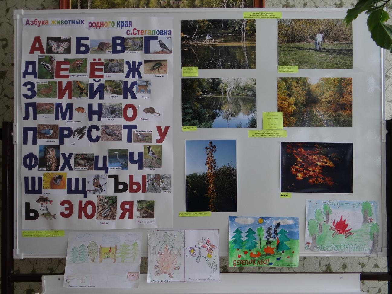 F:\Год экологии\14.03.2013\DSC04393.JPG