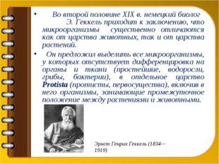 Во второй половине XIX в. немецкий биолог Э. Геккель приходит к заключению,