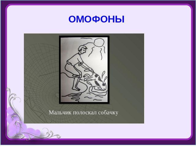 ОМОФОНЫ
