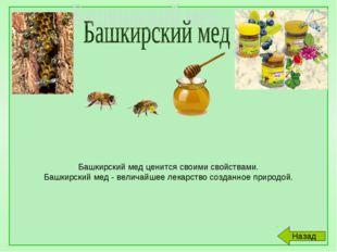 Башкирский мед ценится своими свойствами. Башкирский мед - величайшее лекарс