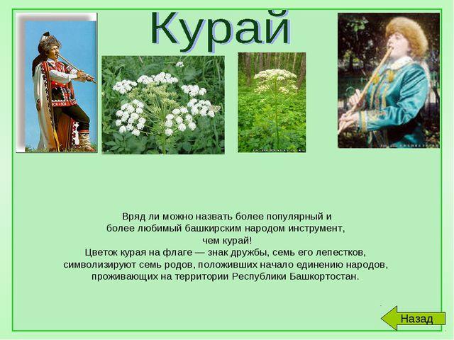 Вряд ли можно назвать более популярный и более любимый башкирским народом ин...