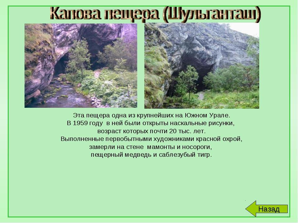 Эта пещера одна из крупнейших на Южном Урале. В 1959 году в ней были открыты...