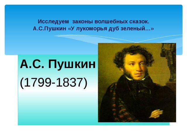Биография поэта Детство поэта Мать Н.О.Пушкина Отец С.Л.Пушкин Няня Арина Род...