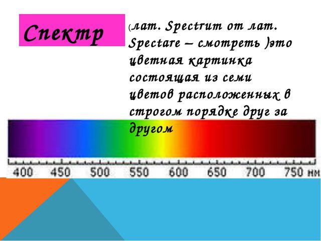 Спектр (лат. Spectrum от лат. Spectare – смотреть )это цветная картинка состо...