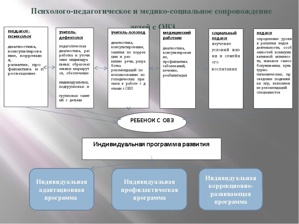 Психолого-педагогическое и медико-социальное сопровождение детей с ОВЗ Индиви...