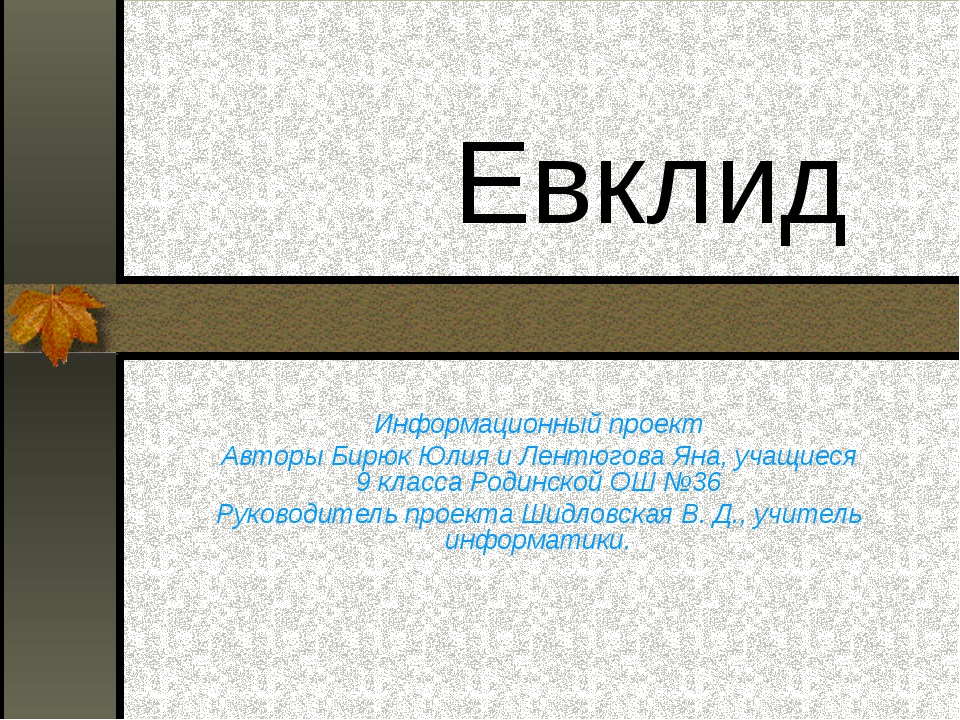 Евклид Информационный проект Авторы Бирюк Юлия и Лентюгова Яна, учащиеся 9 к...