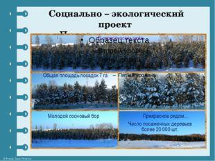 Социально – экологический проект «Подарим лес потомкам» © Фокина Лидия Петровна