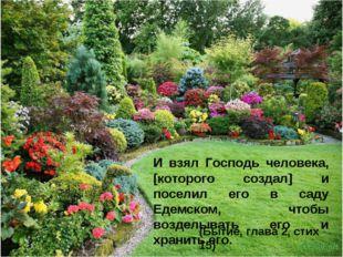 И взял Господь человека, [которого создал] и поселил его в саду Едемском, что