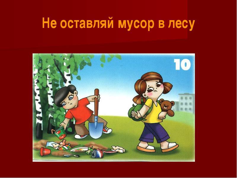 Правила поведения в лесу Не разоряйте птичьи гнёзда Не разоряйте муравейники Не забирай из леса домой животных