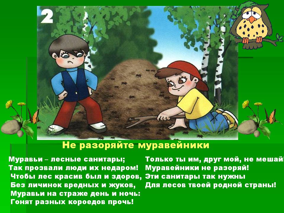 Правила в лесу - Опасности - Картинки по окружающему миру