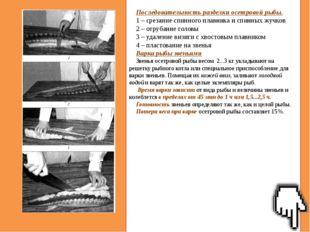Последовательность разделки осетровой рыбы. 1 – срезание спинного плавника и