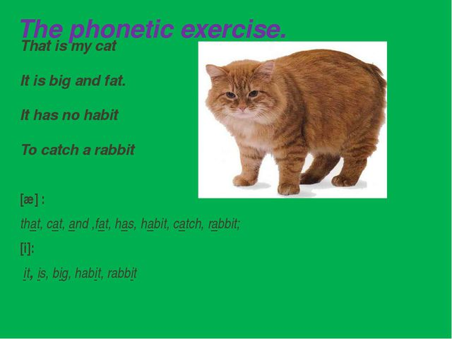 The phonetic exercise. That is my cat It is big and fat. It has no habit To c...