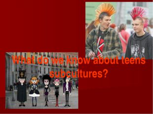 What do we know about teens subcultures?