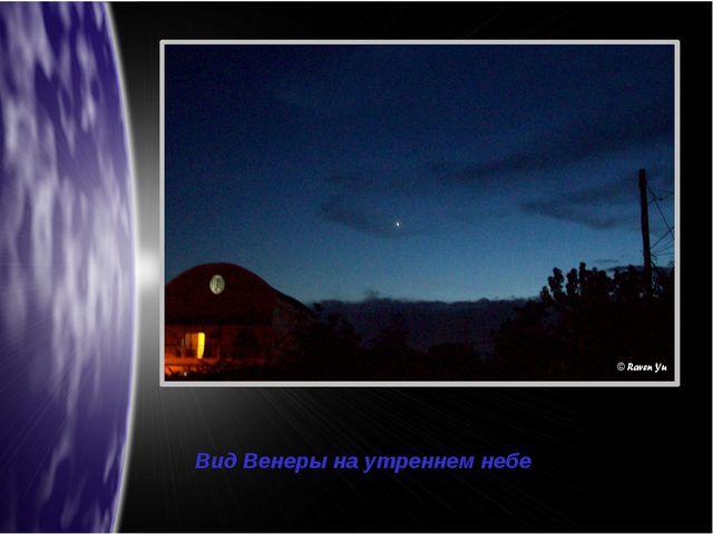 Вид Венеры на утреннем небе