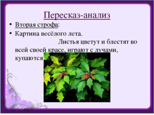 Пересказ-анализ Вторая строфа: Картина весёлого лета. Листья цветут и блестят