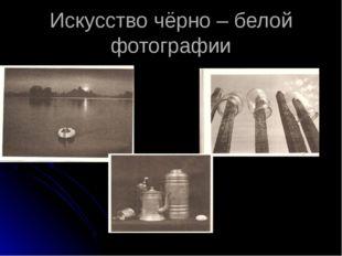Искусство чёрно – белой фотографии С Шипулин « На закате» А.Якубович «Полдень