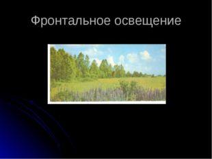 Фронтальное освещение В.Дорожинский «Июль» Приложение №6