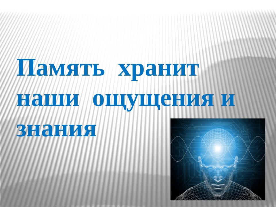 Память  хранит наши  ощущения и знания