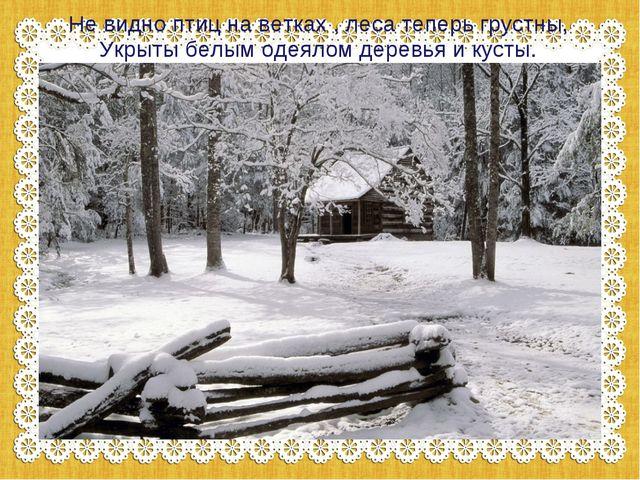 Не видно птиц на ветках , леса теперь грустны, Укрыты белым одеялом деревья и...