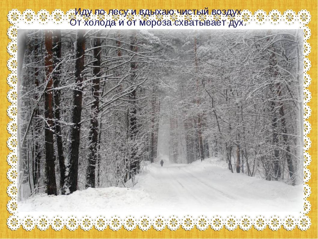 Иду по лесу и вдыхаю чистый воздух От холода и от мороза схватывает дух.