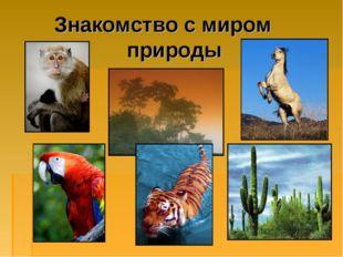Знакомство с миром природы